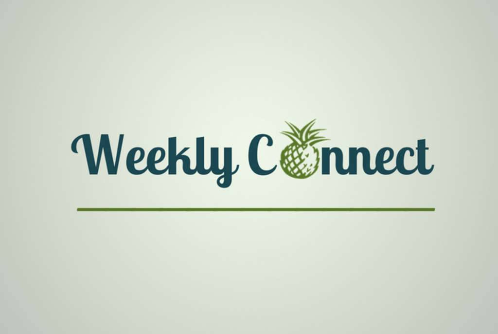 Weekly Connect from PineappleSearch.com
